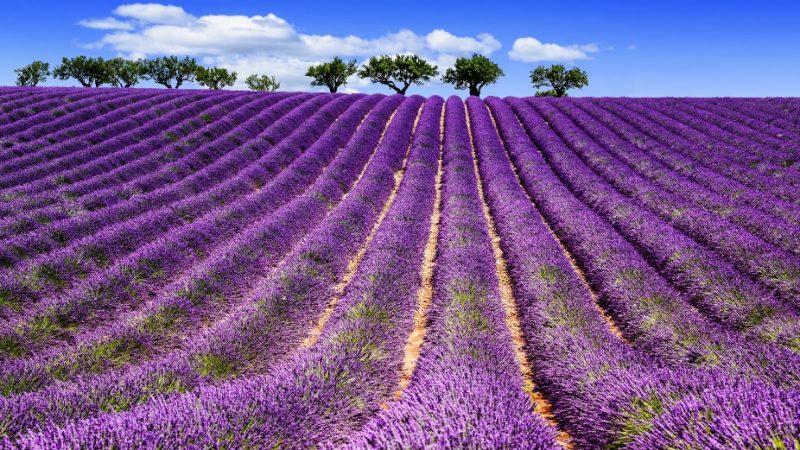 Les 10 plus beaux paysages français à voir absolument